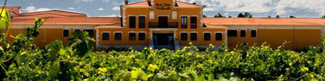 Bodegas Pradorey (Real Sitio de Ventosilla)