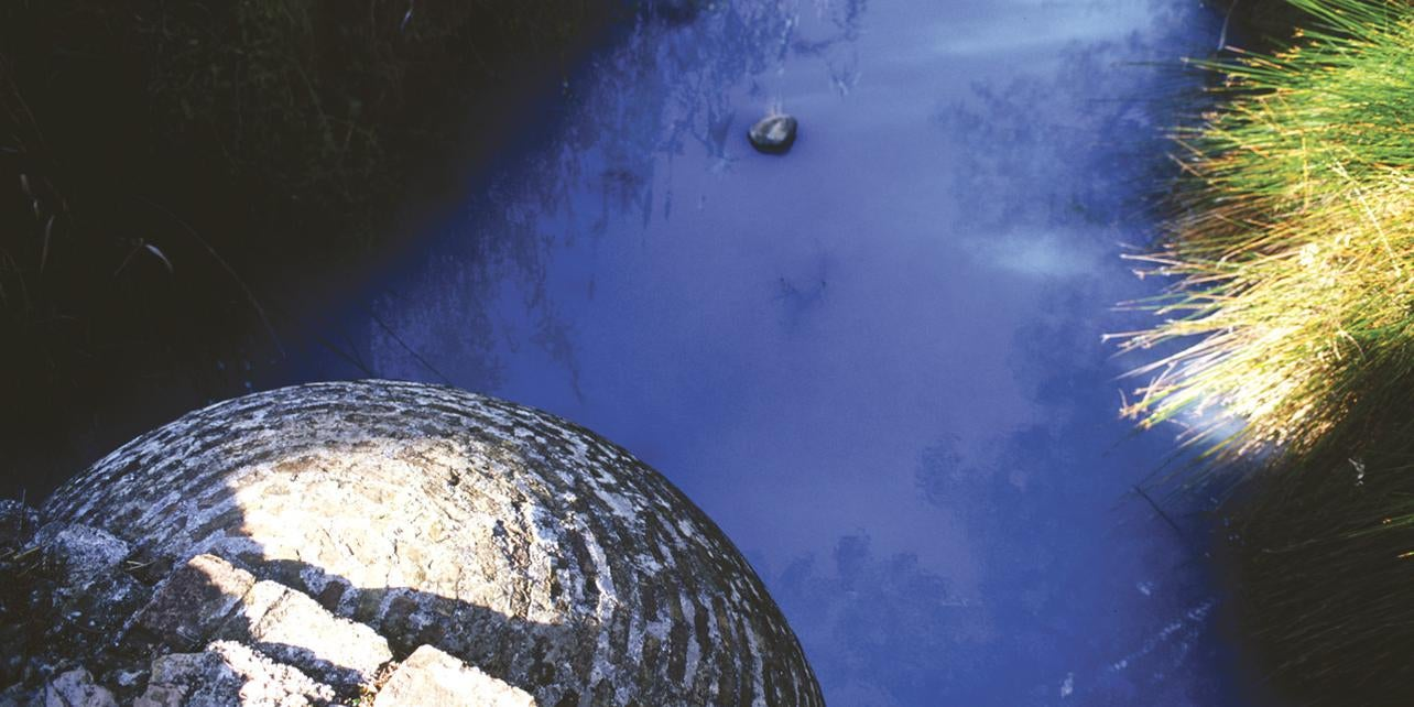 Baños de la Hedionda