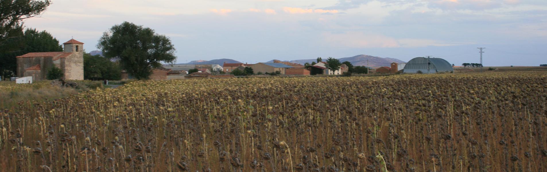 Villaseca de Arciel