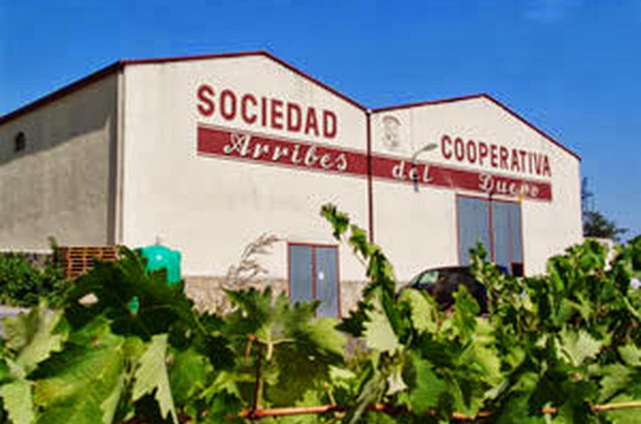 Bodegas Arribes del Duero S. Coop.
