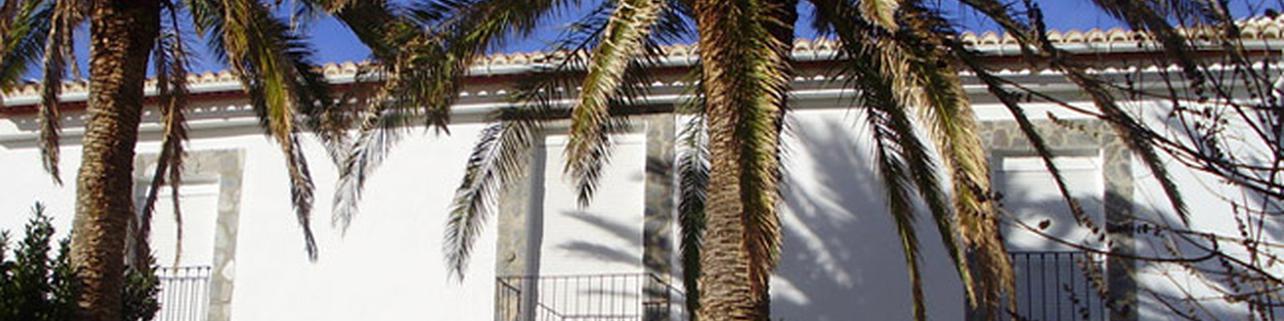 Bodega Mª Amparo García Hinojosa