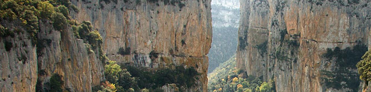 Baja Montaña Viñedos y Bodegas