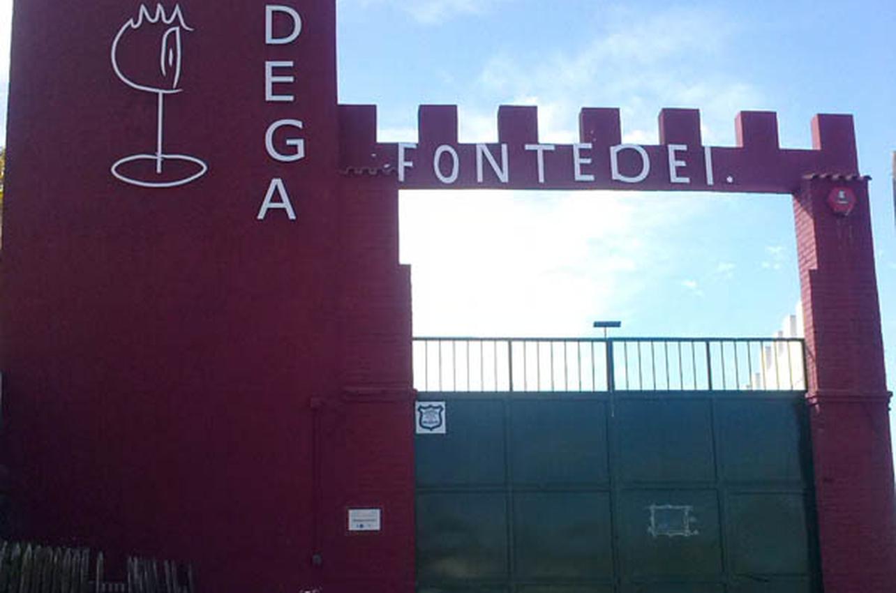Bodegas Fontedei S.L