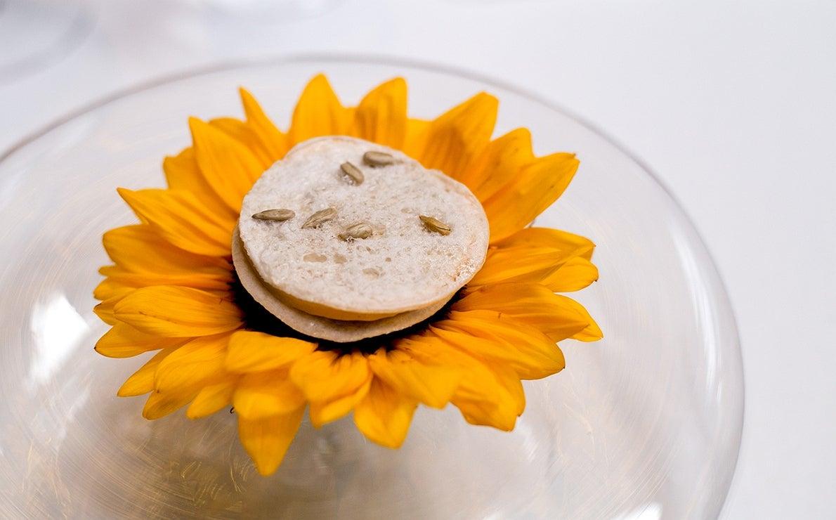 Girasol con pipas heladas, galleta fría de obleas rellena de helado hecho con las propias pipas y servida sobre un girasol natural, del restaurante 'Cocina Hermanos Torres', en Barcelona.