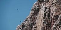 5 Monfragüe (fotogalería)