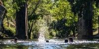 Varias niñas juegan en el agua de la piscina de Perales del Puerto con la vegetación al fondo.