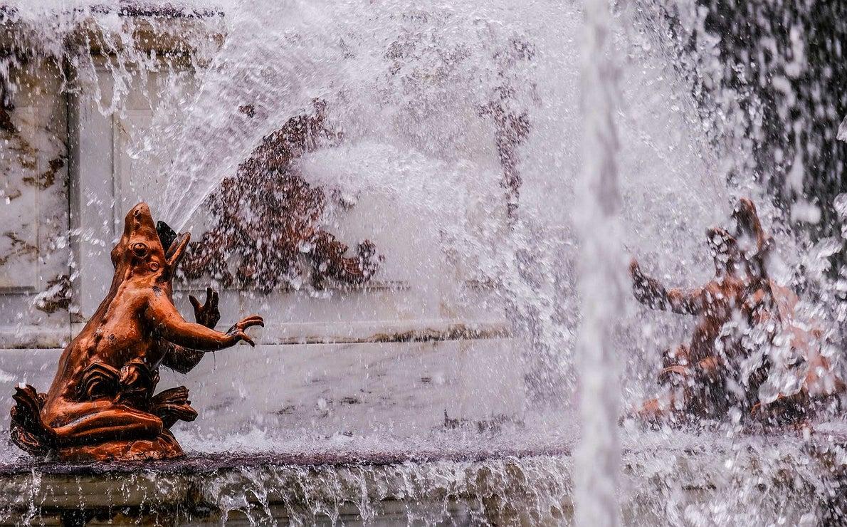 Detalle la escultura de una rana expulsando agua en la fuente a la que este animal da nombre.