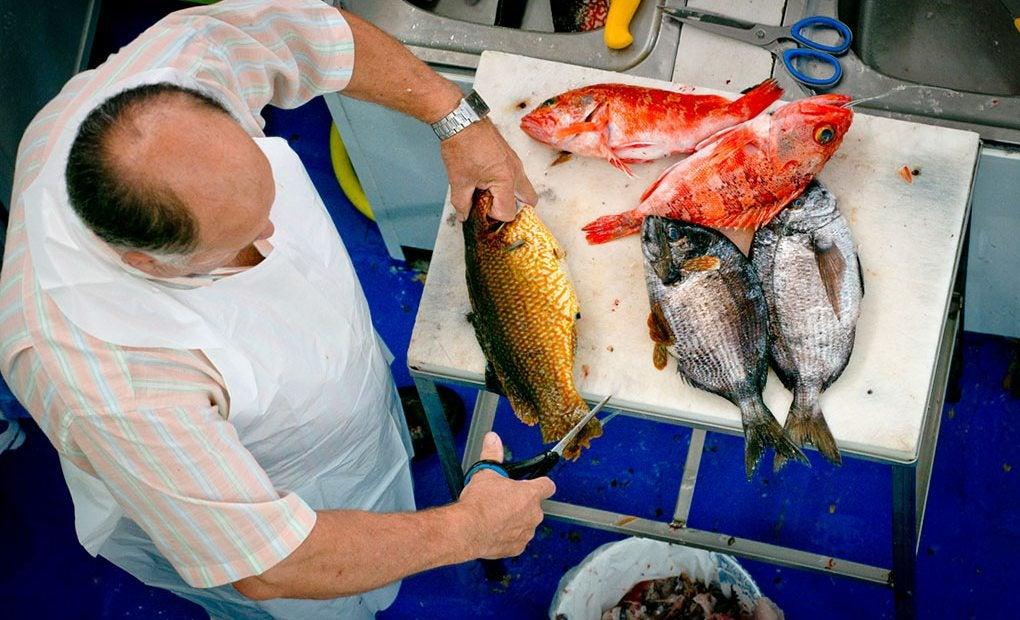 Los impresionantes pescados de anzuelo de pescadería Freire.