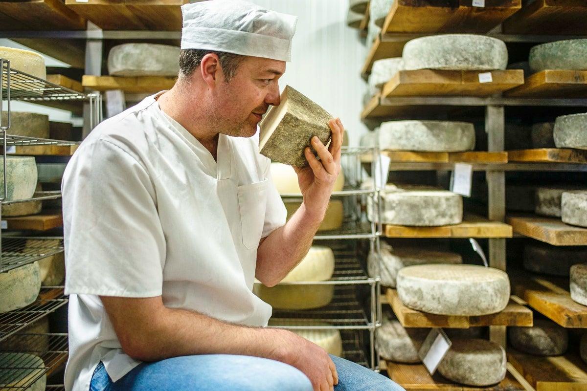 Paco olfatea uno de sus quesos en la sala de maduración.