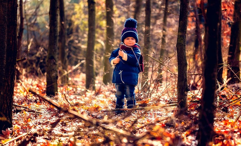 Niño en un bosque con una estampa otoñal. Foto: Shutterstock