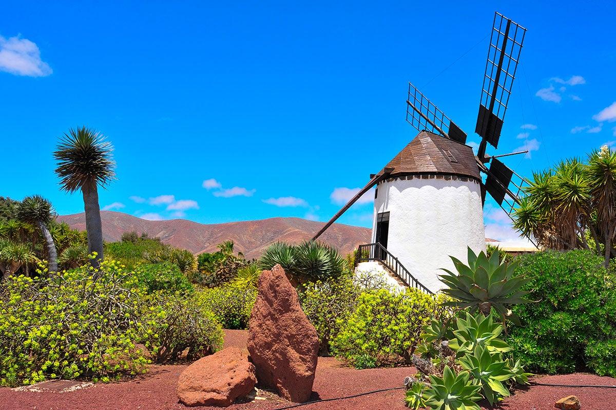 Unamuno cambio la fama de la isla canaria. Foto: Shutterstock