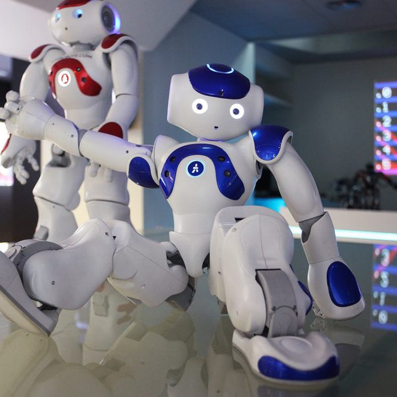 The Robot Museum.